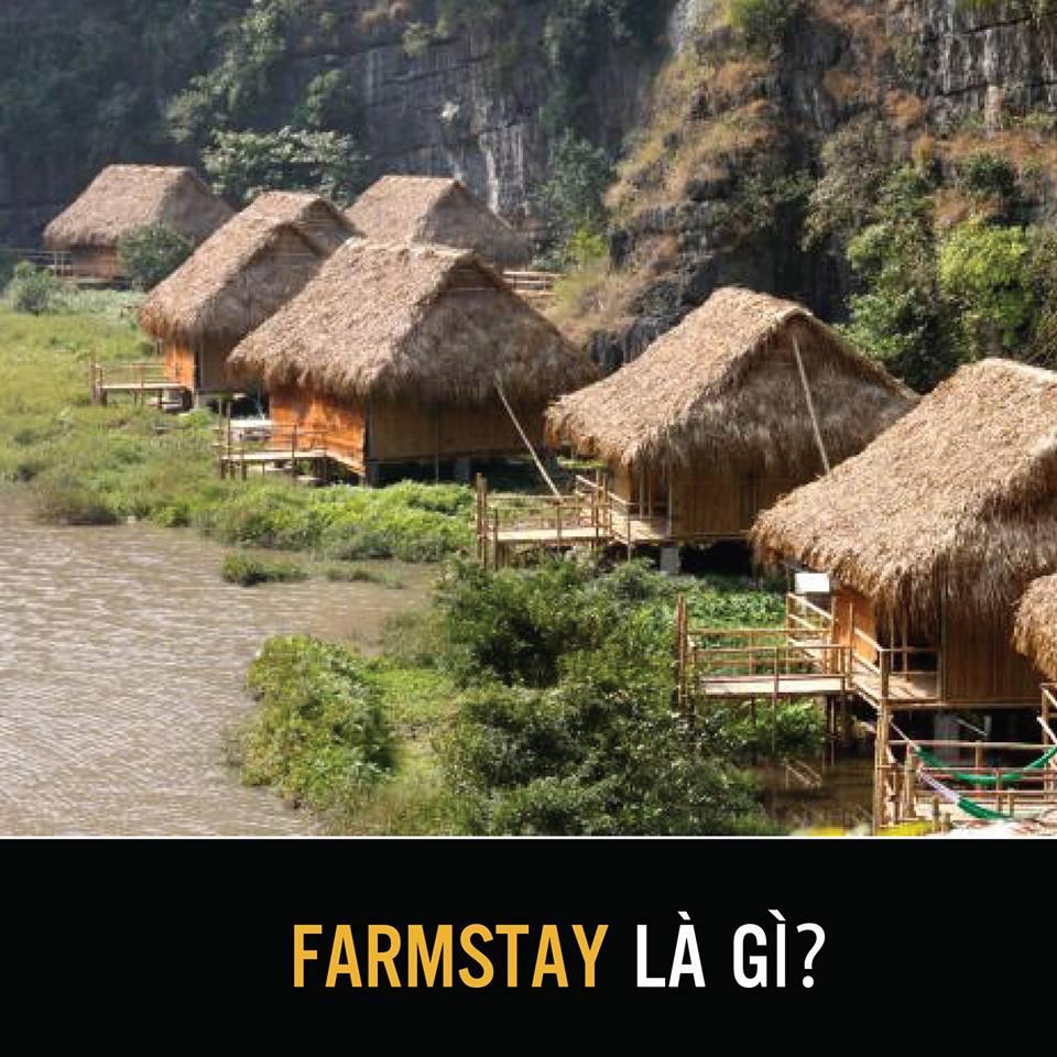 Phân biệt các loại hình kinh doanh dịch vụ lưu trú farmstay