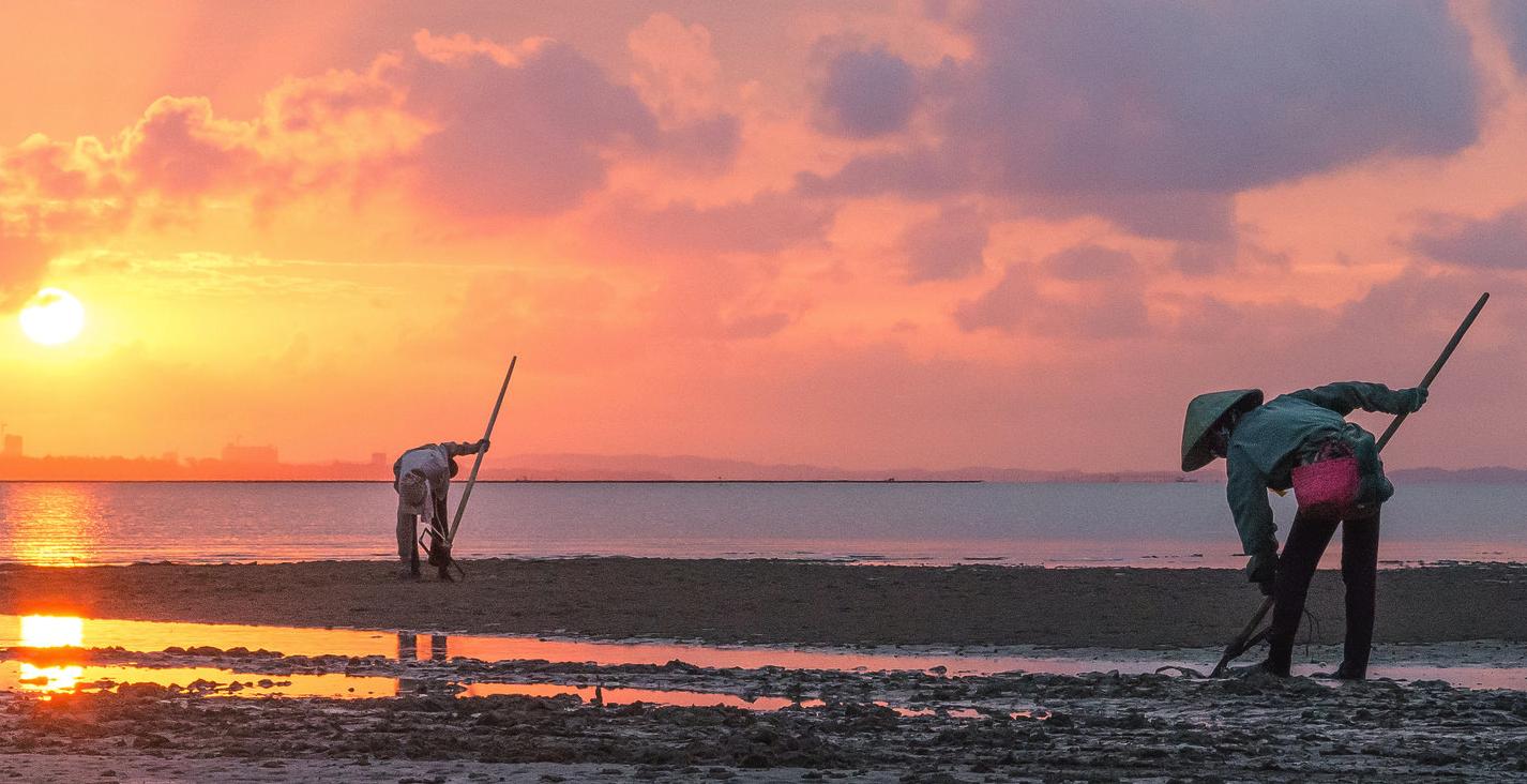 đào Sá sùng bãi biển Trà Cổ
