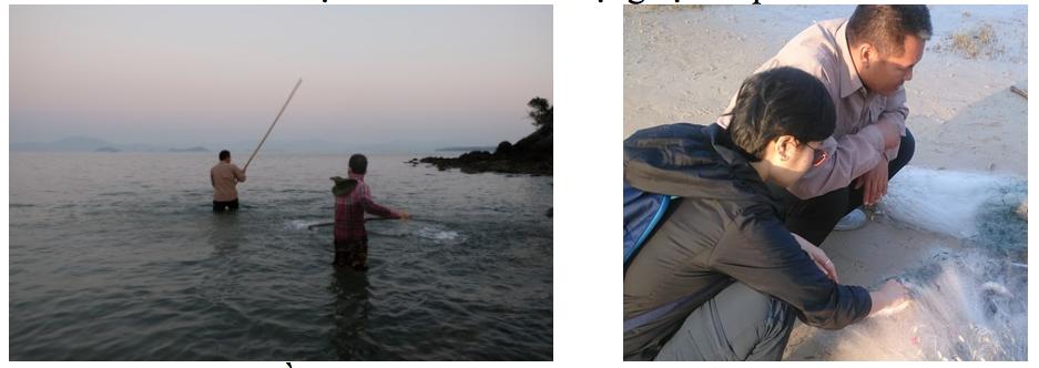 dụng cụ đánh bắt cá