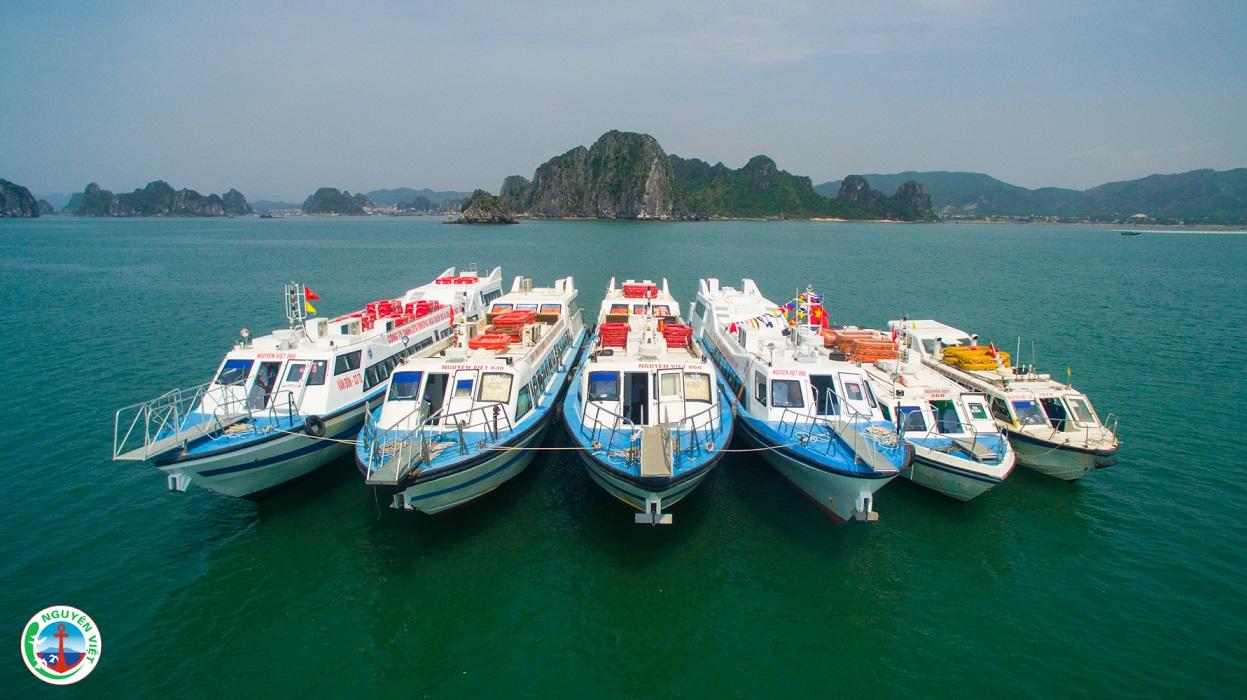 tàu cao tốc ra đảo Quan Lạn